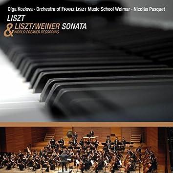 Liszt: Piano Sonata in B Minor, S. 178