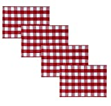 Newbridge Buffalo Check Rustic Indoor/Outdoor Cotton Placemats - Cottage Style Farmhouse Gingham Check Pattern Heavy Weight Cotton Weave Reversible Placemats - Set of 4 Placemats, Red