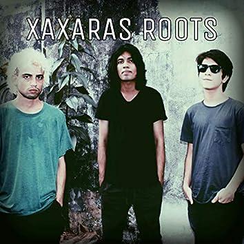 Xaxaras Roots
