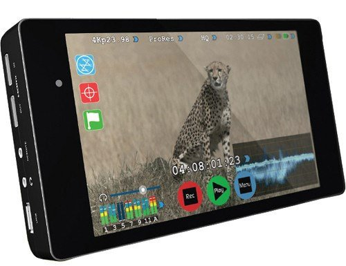 "ATOMOS ATOMSHG001 - Pantalla para cámaras Digitales (7"", IPS táctil, 4K), Color Negro"