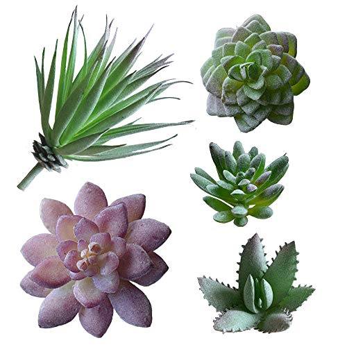 5 PCS  Artificial Succulent Plants Unpotted in Flocked Fake Realistic Succulents for Home Gardern Diy Decoration