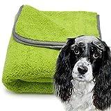 awiwa Hundehandtuch Extra saugfähig aus Microfaser für große und Kleine Hunde (60x90 cm)