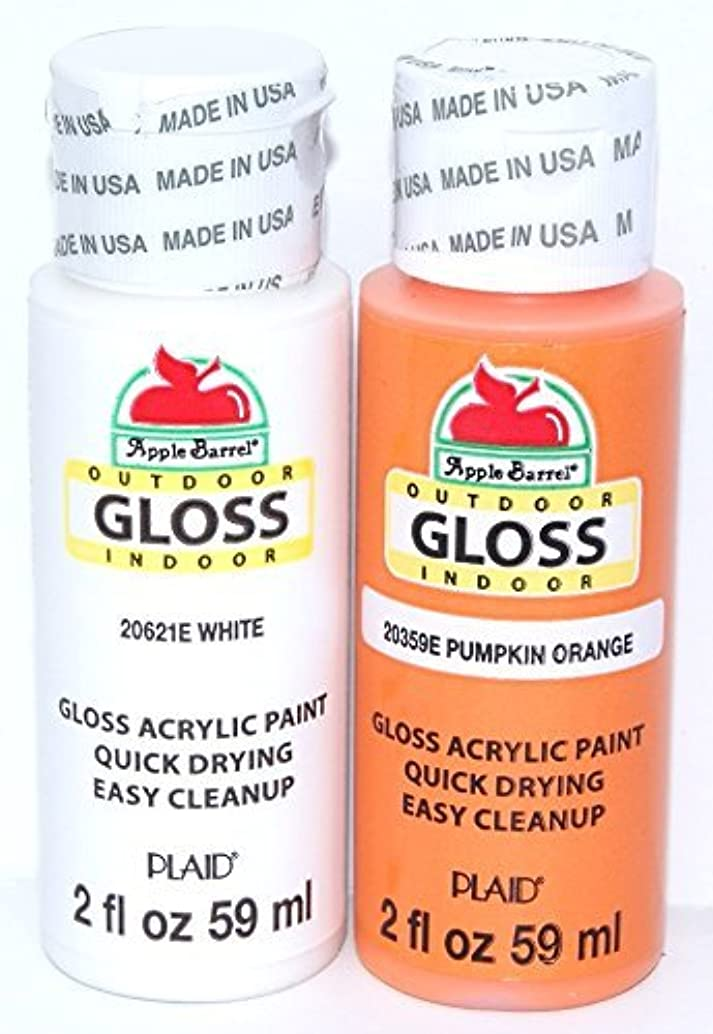 Apple Barrel Acrylic Paint Outdoor Indoor Gloss Set - Orange and White (2 Ounces Each)