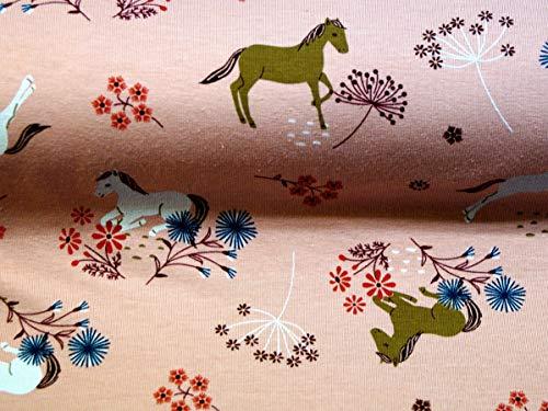 Tela de jersey de algodón por metros, diseño de caballos, tela para coser | tela de algodón para niños con patrón plateado | 150 x 200 [cm] | confeccionada individualmente para ti