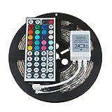 Redgiants 5M 5050 RGB SMD LED Waterproof Flexible Strip 300 LEDs + 44 Key IR Remote