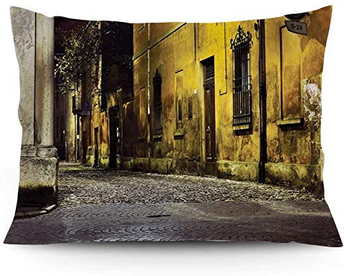 Keyboard cover Throw Pillow Case Old Old Empty Dark City Road Allees with Large Light and House Photo Printed Cushion Cover 16'x24'