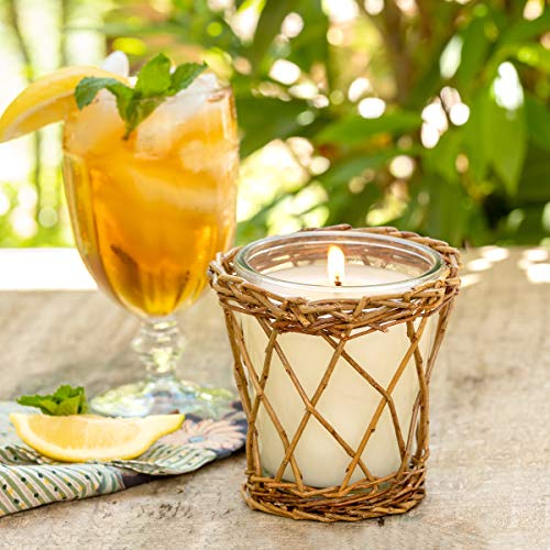 Park Hill Collection ENP10001 Willow Candle, 12 oz (Sweet Tea)