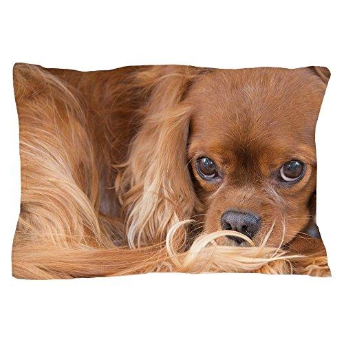 CafePress Sweet Friend Ruby Cavalier King Charle Pillow Case Standard Size Pillow Case, Pillow Cover, Unique Pillow Slip