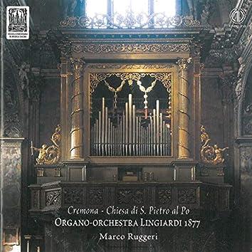 Organo-Orchestra Lingiardi 1877