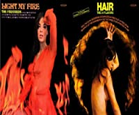 Light My Fire / Hair by The Firebirds