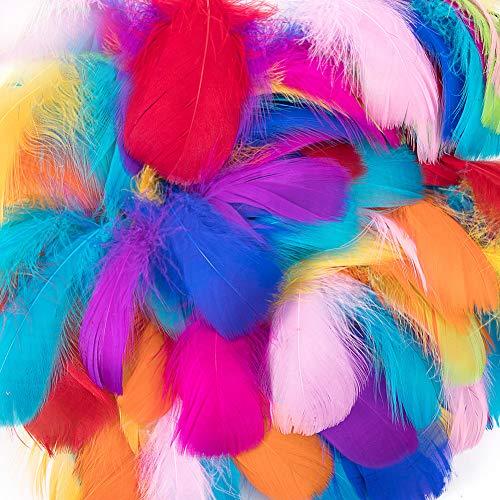Plumas de colores,300 piezas de plumas para manualidades, plumas llamativas,plumas para manualidades naturales, plumas de ganso/pavo para bodas,fiesta de cumpleaños,decoraciones(Colorful)