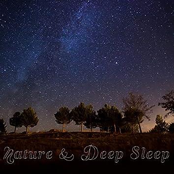 Nature & Deep Sleep - Easy Listening, Calm New Age, Easy Sleep, Night Sounds