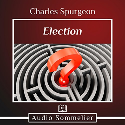 Election audiobook cover art