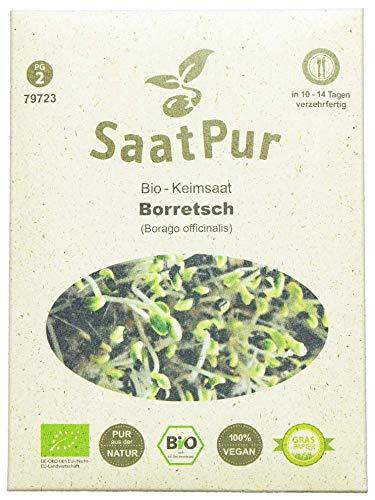 SaatPur Bio Keimsprossen - Borretsch - Keimsaat für die Sprossenzucht zuhause - 10g Gurkenkraut