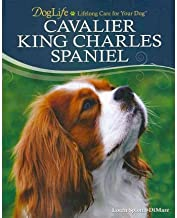 boutique cavalier king charles