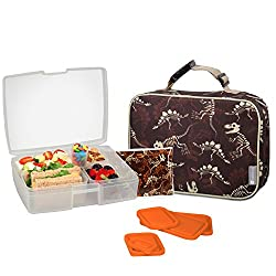 6. Bentology Dinosaur Lunch Bag Box and Ice Pack Set