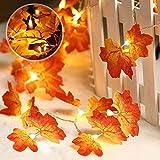 Hojas de Otoño,3M 20 LED Guirnalda Otoño Hoja de Arce Artificial Cadena de Luces Exterior Decoracion Halloween Lámpara para Navidad Fiesta Escalera Decorativa