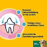 Pedigree DentaStix Hundesnack für große Hunde (25kg+), Zahnpflege-Snack mit Huhn und Rind, 10 Packungen je 7 Stück (10 x 270 g) - 2