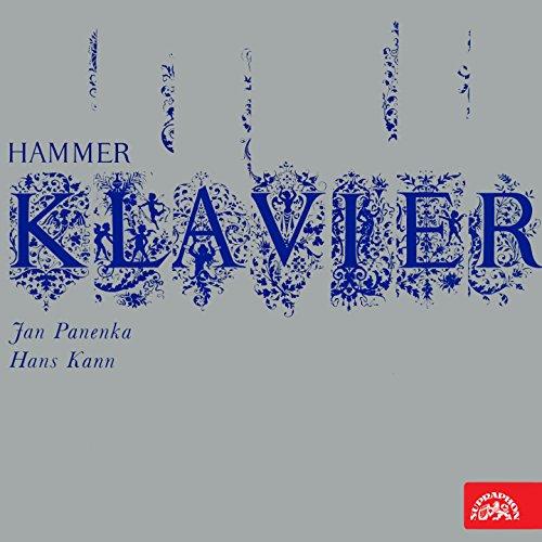 Hammer Klavier