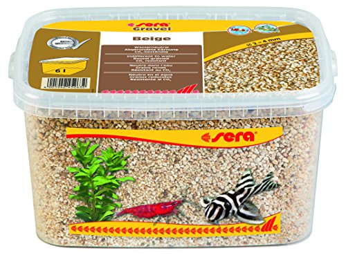 sera 32272 Gravel Beige Ø 2-4 mm, 6 l, beige - Aquarienkies ideal für Garnelen & Krebse sowie für gründelnde Welse