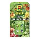 Compo Duaxo PFnPE FUNGICIDA SISTEMICO 200 ML...