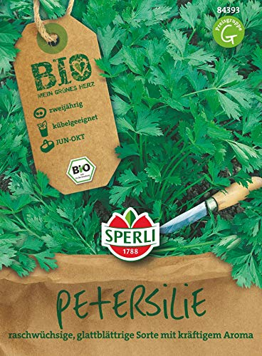 BIO Petersilie, raschwüchsige glattblättrige Sorte mit kräftigem Aroma, Bio-Saatgut