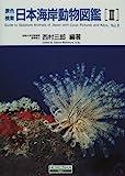 原色検索日本海岸動物図鑑〈2〉