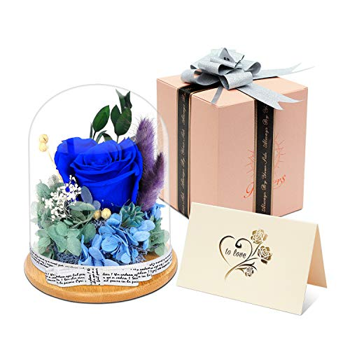 KING DOO Forever Rose, Handmade Preserved Real Rose Eternal Flower, Never Withered Rose Gift for Valentine's Day, Birthday, Christmas, Anniversary and Mother's Day (Royal Blue)