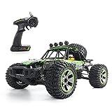 Dittzz 2.4 Ghz RC Voiture Télécommandée - 1:10 4WD Véhicule Tout-Terrain à Grande Vitesse - 40KM/H Monstre Buggy Camion Radiocommande - Cadeau pour Enfants et Adultes
