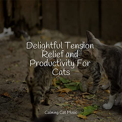 Jazz Music Therapy For Cats, Pet Care Club & Music for Cats Project