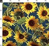Sonnenblume, Gemalt, Gelb, Blau, Botanisch,