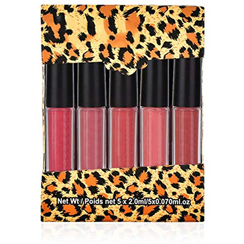 Matte Lipstick Set, 5 stuks Mini Waterproof Langdurige Matte Lipstick Lipgloss Set Make-up Cosmetica (Type A)
