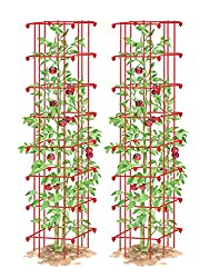 Extra Tall Tomato Cages (2)