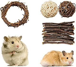Rieibi Hamster Chew Toys, 4 Pack Small Animal Activity Toys Accessories Teeth Care Molar Toy for Bunny Rabbits Gerbils Gui...