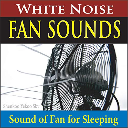 Window Air Conditioner (White Noise for Sleeping)