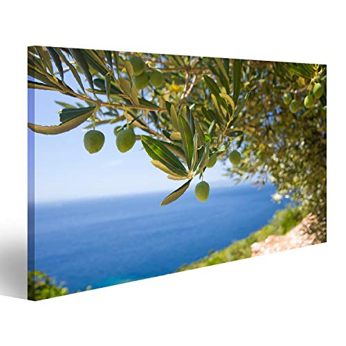 bilderfelix® Bild auf Leinwand EIN Olivenbaum auf dem Meeresgrund Wandbild Leinwandbild Kunstdruck Poster 100x57cm