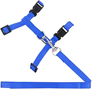 Mumoo Bear Cat, Rabbit Harness & leash, Nylon Traction Chest Strap, Adjustable up to 45cm, with quick release buckles - Blue