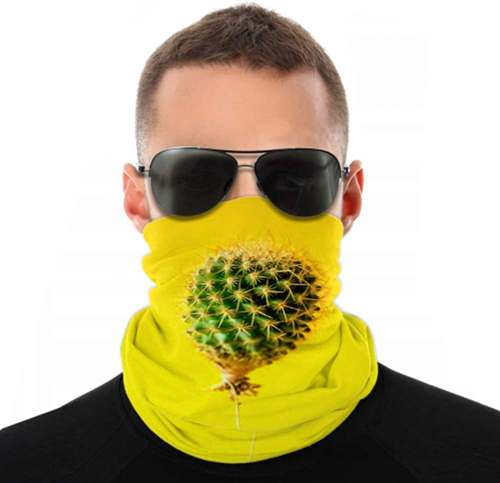 Headbands For Men Women Neck Gaiter, Face Mask, Headband, Scarf Cactus Balloon On Bright Yellow Background Turban Multi Scarf Double Sided Print Fashion Headbands For Sport Outdoor
