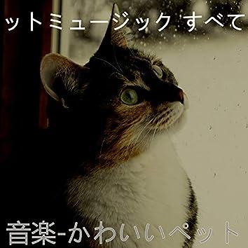 音楽-かわいいペット