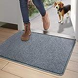 DEXI Dirt Trapper Door Mat,Non-slip Barrier Mats for Indoor and Outdoor,Super Absorbent Entrance Rug Machine Washable Soft Floor Mat Carpet(Grey-Blue,50 x 80 cm)