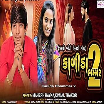 Kalida Bhammar 2