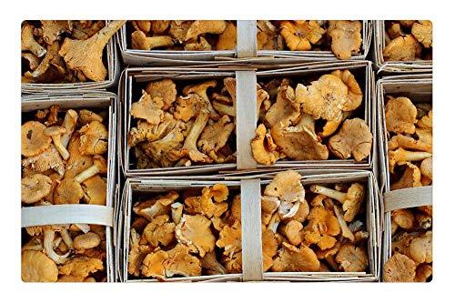LESGAULEST Doormat Floor Rug/Mat (23.6 x 15.7 inch) - Mushrooms Chanterelles Market Food Mushroom