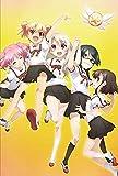 Fate/Kaleid liner プリズマ☆イリヤ ツヴァイ! DVD通常版 第4巻[KABA-10278][DVD]