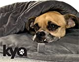 Kya Pet Products Weighted Pet Blanket | Most Premium Quality Material on The Market | Comfort & Relaxation | Calming