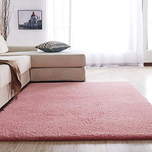SDAFSA Plüsch Teppich Flauschige Teppich Teppiche Für Schlafzimmer/Wohnzimmer Rechteck Große Plüsch rutschfeste Weiche Teppich Weiß Rosa Rot 7 Farben-Rosa_60 X 160 cm, 23 X 63 Zoll