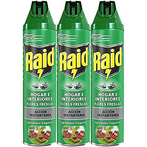 Raid - Hogar E Interiores, 600 ml - [Pack de 3]