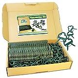 MGS SHOP Pflanzenclips 100 Stück stabile Clips Pflanzenklammern für kleine & große Triebe...