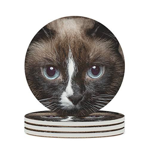 Perstonnoli Posavasos de cerámica con diseño de gato y animales, redondos, con parte trasera de corcho, 4 unidades, para vasos, jarrones, velas, 10 cm, color blanco, 6 unidades