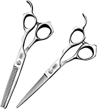 Professional Barber 6 Inch Hairdresser Professional High-end Haircut Flat Scissors + Tooth Scissors Tools Set Scissors (Color : Silver)