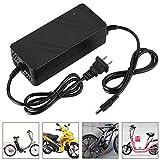 Keenso Cargador de Bicicleta eléctrica, DC HeadCN Plug 180V-220V 36V/2A, 48V/2A Cargador de batería de Litio para Bicicleta eléctrica Bicicleta(48V/2A)